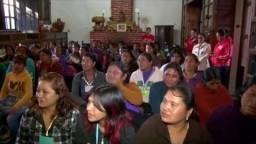 Save the Children México: Resultados 2014