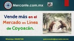 Coyoacán Vende en línea con Mercante.com.mx respetando el color del semáforo COVID - ppt